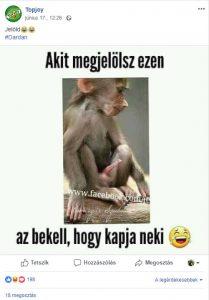 Topjoy álló majomfasz